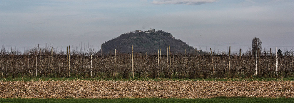 A24-Rocca-IMG_9112