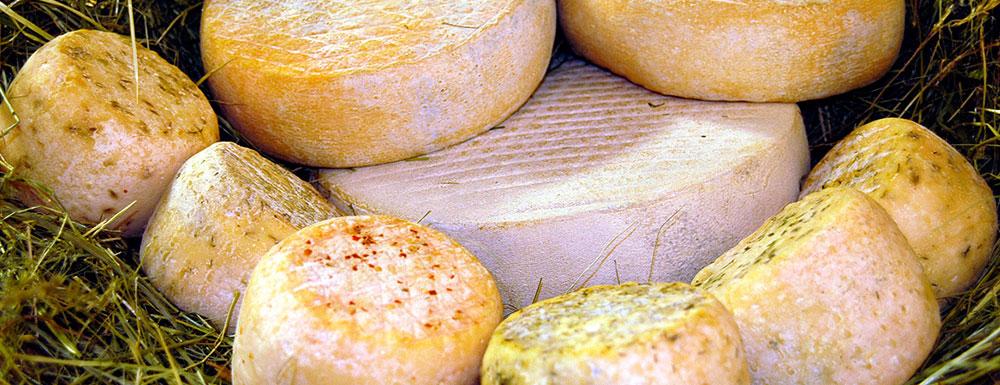 formaggi-caprini